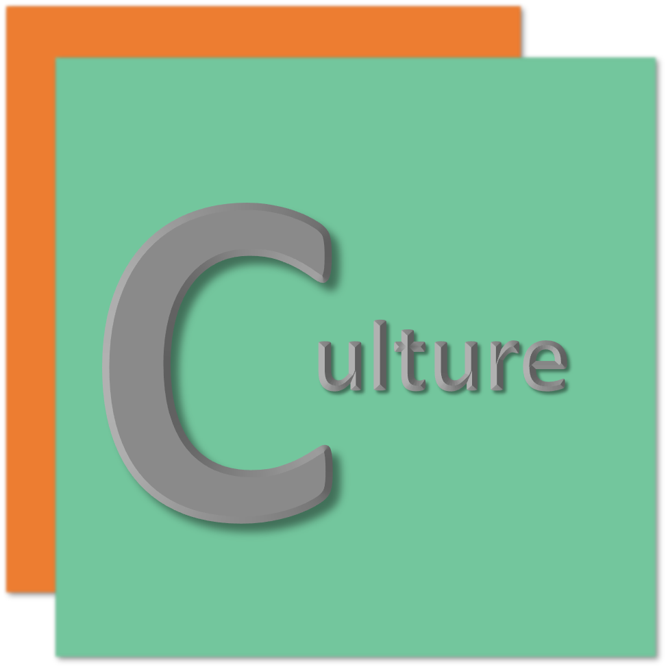 Culture onboarding